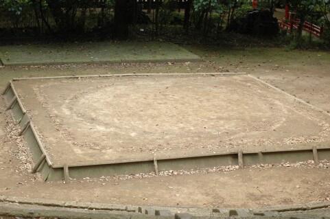 相撲の土俵でドスコイ