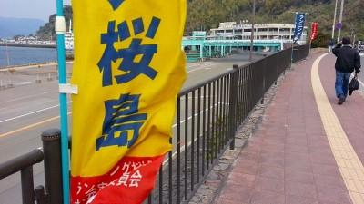 ②桜島の黄色い旗