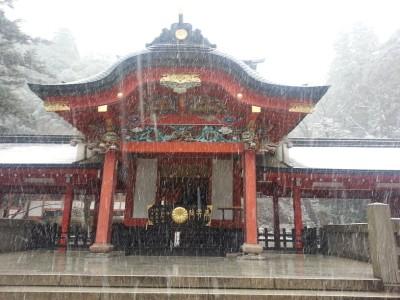 ⑦霧島神宮勅使殿で参拝をした。